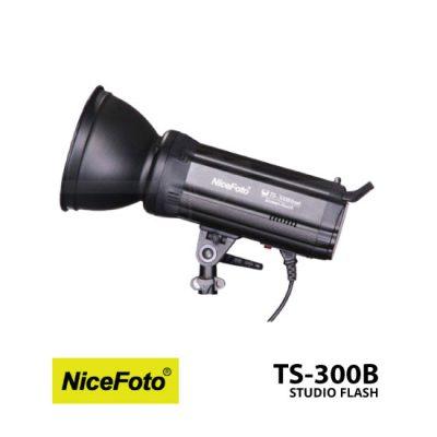 jual Nice Foto Studio Flash TS-300B