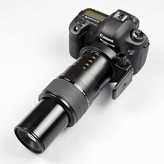 Canon MPE 65mm f/2.8 1.5x Macro