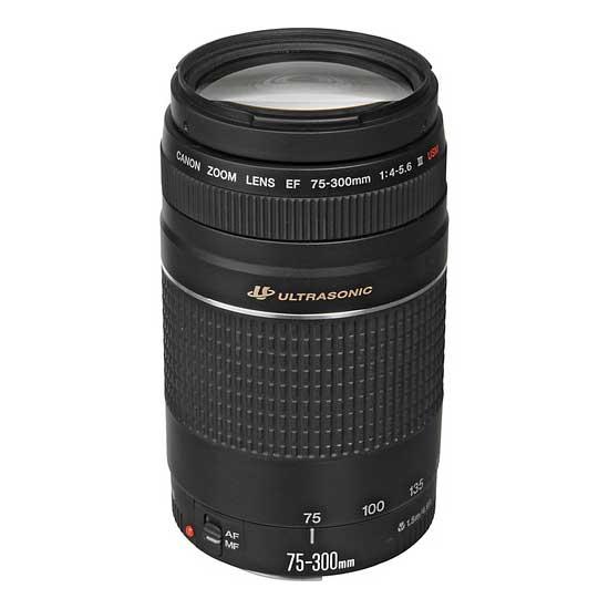 Jual Lensa Canon Canon EF 75-300mm f/4-5.6 III USM Harga Murah Surabaya & Jakarta