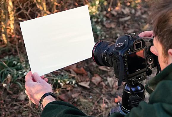 Correct_white_balance_camera_tips_DCM139.shoot_rescue.step1_