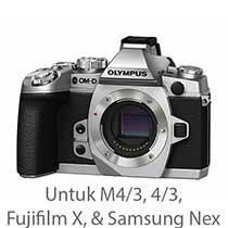 Others (4/3, M 4/3, Fuji X, Samsung)