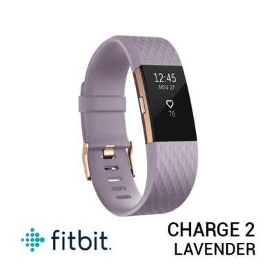 jual jam Fitbit Charge 2 Lavender Rose Gold harga murah surabaya jakarta