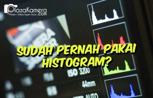 Apakah Fungsi Histogram?