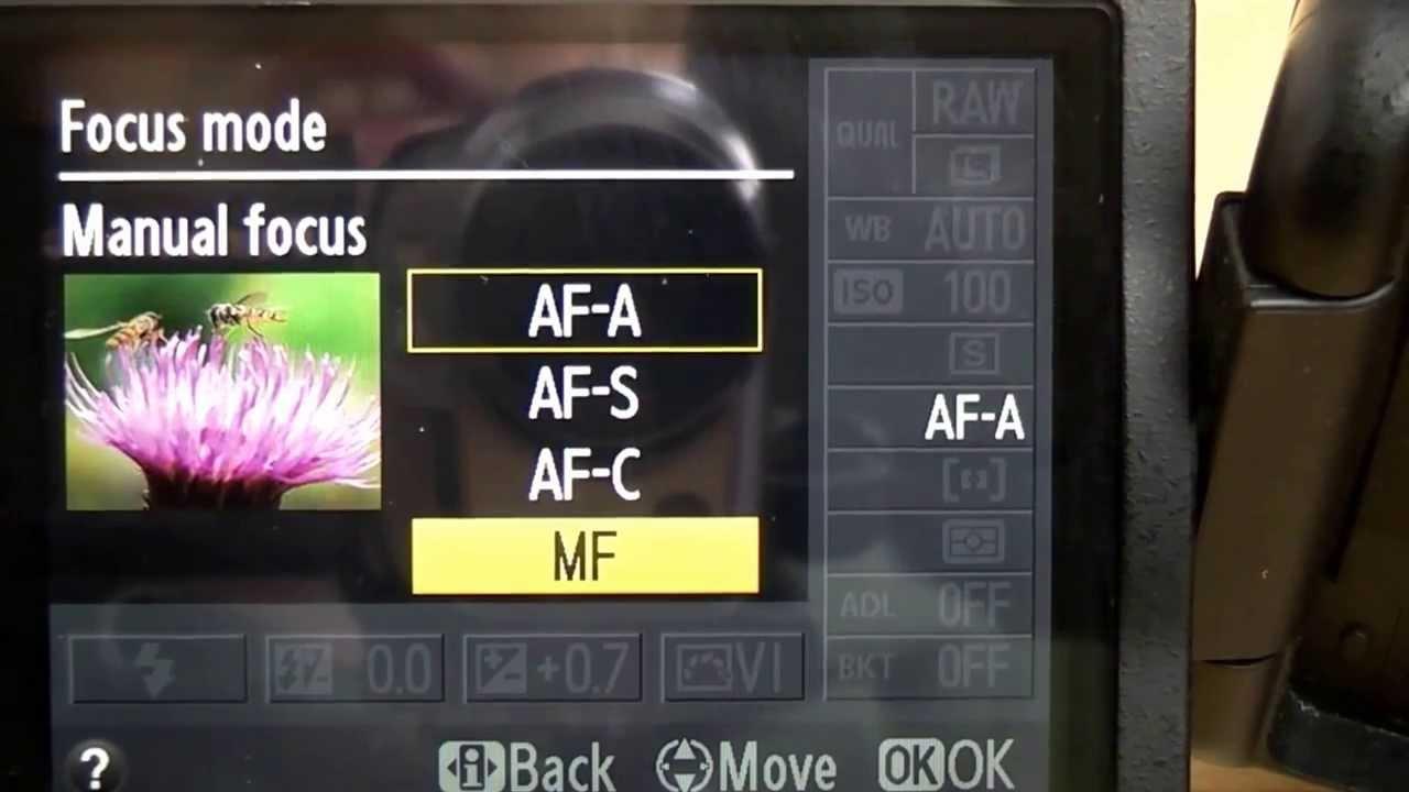 Autofocus vs Manual Focus, Kapan Sih Harus Makai-nya? oleh - komunitasfotografi.xyz